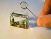 mali akvarijum 10-20