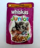 whi sos junior