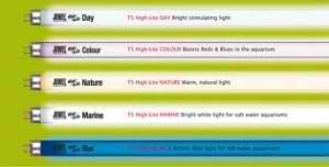 juwel-neonke-t5-15w-18w-25w-30w-36w-38w-300x152
