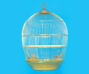 kavezi-ptice-glodari-480g