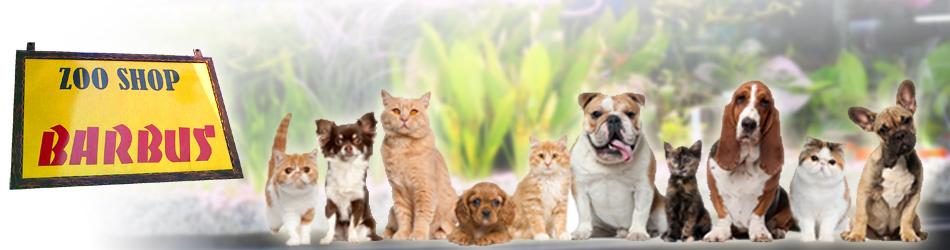 Pet Shop Barbus Pancevo Logo